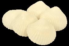 Vita Snäckor