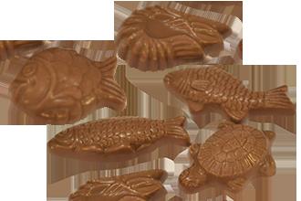 Choklad Sjöfrukter